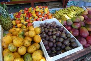 Costa Rica Eats Fruit